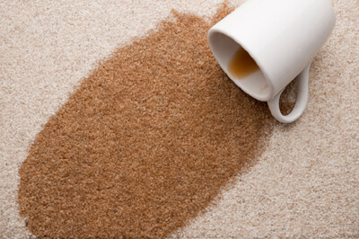 coffee stain on white carpet in Atlanta home