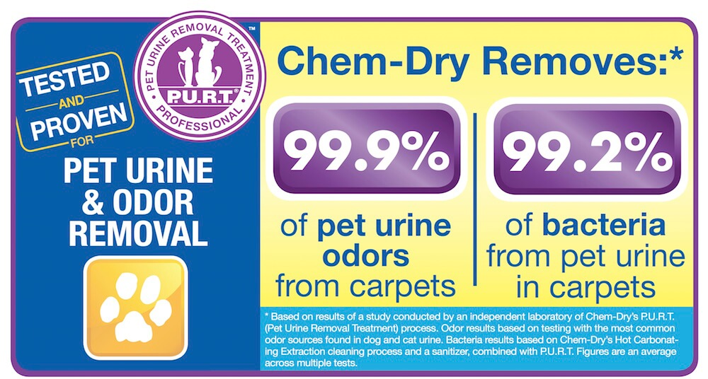 pet urine removal forsyth county ga graphic