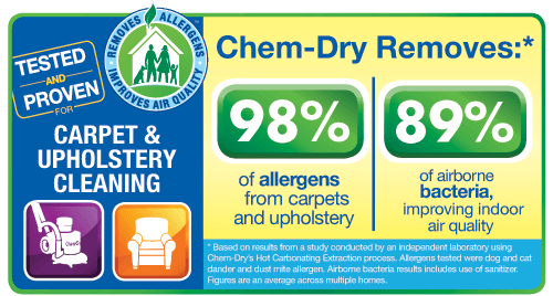 upholstery cleaning gwinnett county ga