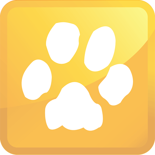 k&c chem-dry pet urine removal treatment icon