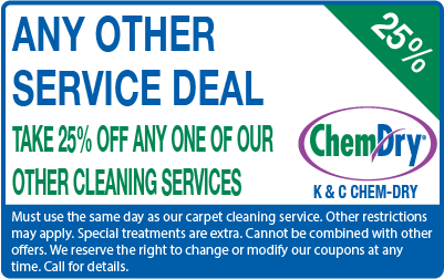 25% off any other cleaning service