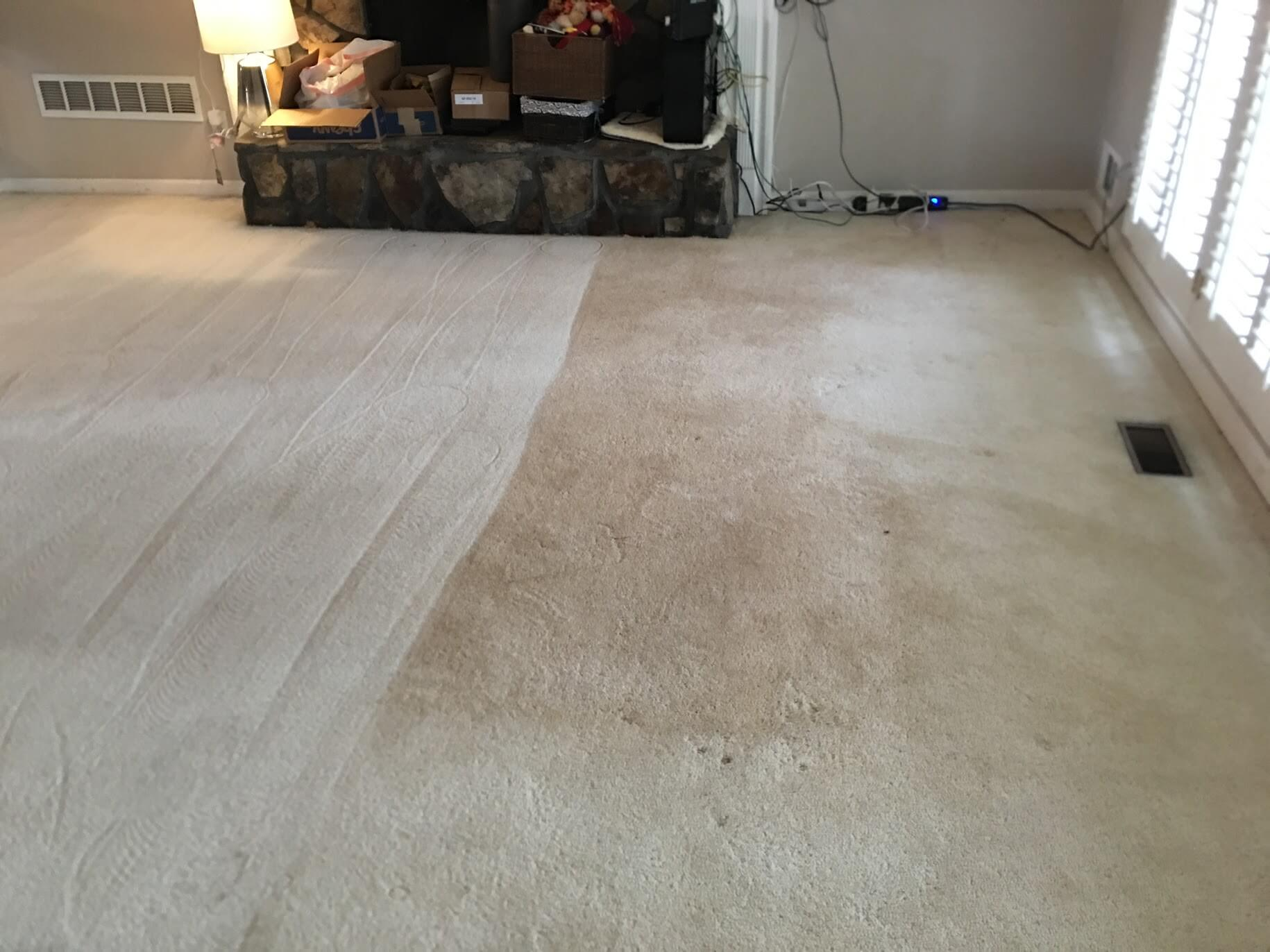 after K&C Chem-Dry carpet cleaning in gwinnett county ga