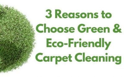 3 Reasons to Choose Green & Eco-Friendly Carpet Cleaning