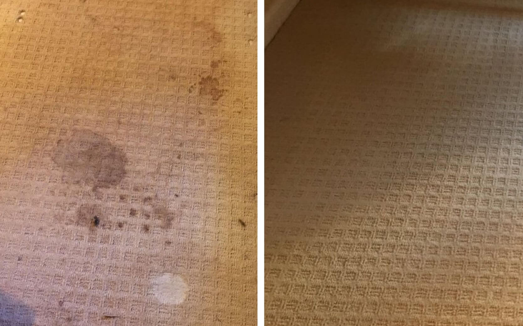 brown carpet before and after carpet cleaning in duluth ga