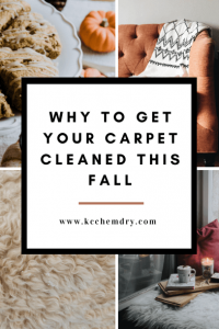 why to get your carpet cleaned this fall graphic